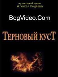 Терновый куст. Муз. проект А. Ледяева