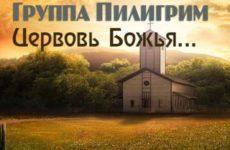 Пилигрим. Альбом «Церковь Божья поднимайся»