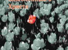 Краеугольный Камень. Альбом Влюбленный в Христа