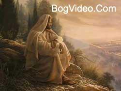 Адония — Под защитой Божьих крыл