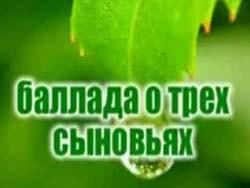 Татьяна Шилова — Баллада о трех сыновьях