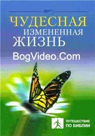Чудесная измененная жизнь 8 - Чип Ингрем