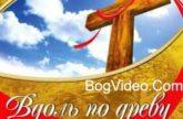 Сергей Вознюк. Альбом mp3 Вдоль по древу. 2010 год
