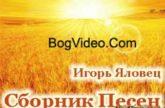 Игорь Яловец. Альбом mp3 Я падаю. 2012 год