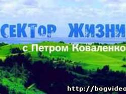 Сектор жизни. Петр Коваленко. (программа 33)