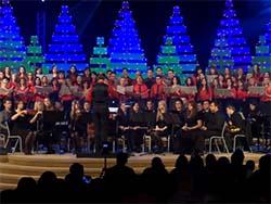 Музыкальный вечер Рождественской песни (2012)