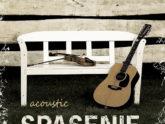 Спасение. Альбом: Acoustic. 2008 год