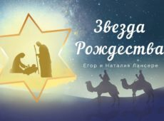 Наталия Лансере — Звезда Рождества