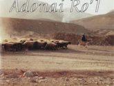 Adonai Ro'l. Альбом Господь — Пастырь мой (2001)