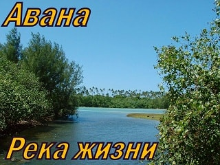 Авана. Альбом: Река Жизни (2006)