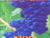 AVVA. Альбом: Виноградник