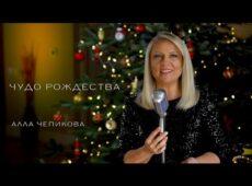 Алла Чепикова — Чудо Рождества